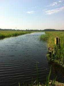 オランダのVoorschoten駅近くのとある牧場にある小川